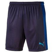 PUMA evoTRG Shorts pánské šortky