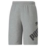 PUMA BIG LOGO Shorts pánské šortky